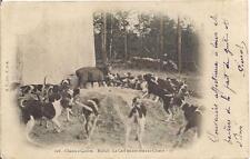 scene de chasse a courre ,hallali, le cerf tenant tête aux chiens