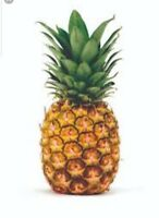 Pineapple Soap / Candle Making Fragrance Oil 2-16 Ounce