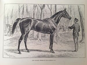Old Antique Print 1876, New Holland, Winner of the Goodwood Cup