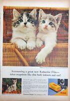 Vintage 1950s Kodak Kodacolor Film Print Ad Cute Kittens in Basket