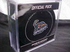 2018 Echl Toledo Walleye (Detroit Red Wings) Official Game Hockey Puck W/Cube