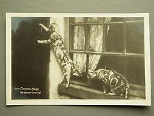 R&L Postcard: Real Photo, Tabby Cat Kitten Knocking at Door, GP Abrham