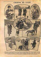 Chiens Luxe Bois de Boulogne Bergers Allemand Levriers Caniche Dogue WWI 1916
