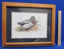 Oak Wood Framed & Matted Mallard Duck Male Print Signed Joel Kirk Waterfowl Bird