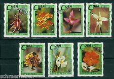 Karibik 1909 - 1915 , o , Motiv Blumen