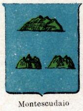 Stemma: Comune di MONTESCUDAIO. Cromolitografia. Val di Cecina.Pisa.Toscana.1901