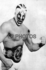 4x6  WRESTLING PHOTO  MIL MASCARAS   MM0008     wwe   tna
