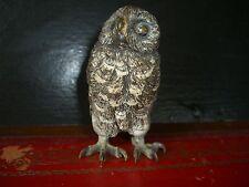 RARE FRANZ BERGMAN SIGNED COLD PAINTED BRONZE OWL by BERGMANN