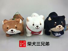 "6''x5"" Amuse Doge Kabosu Shiba Inu Puppy Doll Plush Stuffed Figure SK Japan"