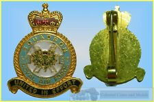 GB. Royal Air Force 53rd Squadron Gilt Enamelled Badge