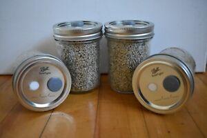 4 Half Pint PF TEK Mushroom Substrate Jars W/ Easy 2 Use Inject and Filter Lids