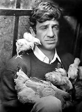 PHOTO JEAN-PAUL BELMONDO - 11X15 CM  # 7