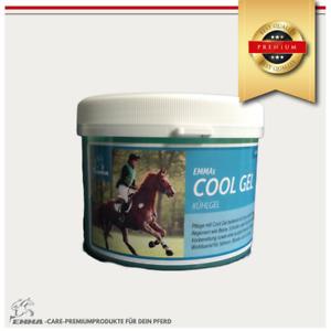 Kühlgel Pferd, Pferdepflege Kältegel für die Pferdebeine-Premium 1000 ml