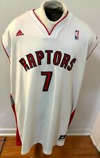 Toronto Raptors Lowry Jersey