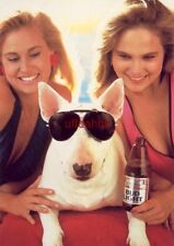 Continental-size SPUDS MacKENZIE THEY FOLLOWED ME HOME, CAN I KEEP THEM? 2 girls