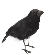 "One Spooky 4 1/2"" Feathered Crow Raven Gothic Halloween Haunted House Decor"