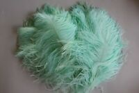 20 NEW COLOUR MINT second B grade ostrich wing plumes 28-35 cm (11-14 inch )