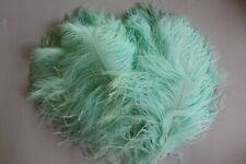 10 NEW COLOUR MINT first A grade ostrich wing plumes 28-35 cm (11-14 inch )