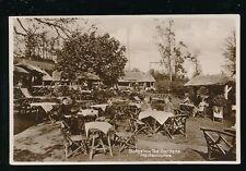 Devon MAIDENCOMBE Bungalow Tea Gardens c1920/30s? RP PPC