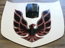 2010-2013 Chevrolet Camaro SS Trans Am Conversion Hood w/ Shaker USED