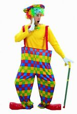 Womens Mens Clown Circus Carnival Adult Outfit Hooped Fancy Dress Costume