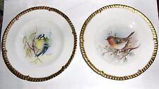 Gerald Delaney Peint à la main signé Oiseau assiettes x2