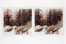 Mont-Blanc Torrent France Photo E67 Stereo Plaque de verre 1927
