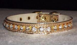 Brilliant Rhinestone Dog Collars in Gold Metallic with Genuine Crystal Jewels