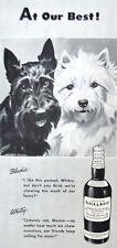1947 Scottish Scottie Westie Terrier Dog Morgan Art Black White Scotch print ad