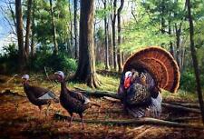 "James Killen ""The Patriot"" Wild Turkey S/N Print 24 x 17"