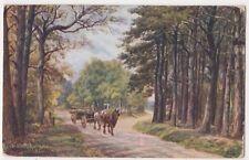A.R. Quinton, Broadwater Forest Tunbridge Wells, Salmon 1277 Art Postcard B748