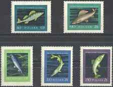 Timbres Poissons Pologne 928/32 * lot 10040