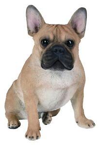 Vivid Arts - REAL LIFE DOGS - Sitting Golden French Bulldog Large | XRL-SFBD-A