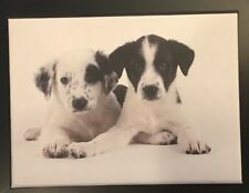 Box Of 15 Puppy Dog K9 Note Cards Envelopes Stationary Paper Office Blank