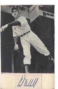 Vintage Carl Hubbell Giants Signed Cut Display HOF D 1988 JSA