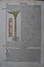 Originaldrucke (bis 1800) aus Italien für Holzschnitt