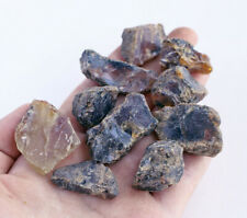 30.3g Natural Indonesian Blue Amber Copal Collection Rough Specimen WGB860