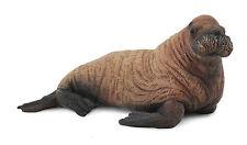 CollectA 88570 Walrus Calf Marine Mammal Animal Figurine Toy Model Figurine NIP