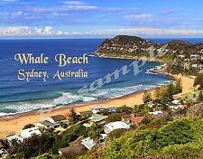 Australia - Sydney - WHALE BEACH - Travel Souvenir FLEXIBLE Fridge MAGNET