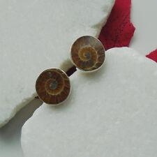 Ammonit Fossil braun beige rund Design Ohrstecker Ohrringe 925 Sterling Silber