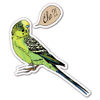Budgie Car Laptop Sticker Decal Stickers Pet Art Laptop #6186EN