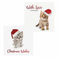Pack of 10 Christmas Cards with Foil Detail - 8490 Cats