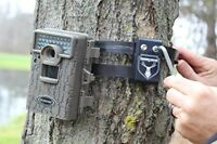 "Heavy Duty 48"" Trail Camera Lock Metal Security Strap Tree Mount Holder Game Cam"