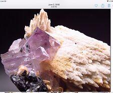 Pale Purple/Pink Fluorite And Calcite Crystals On Matrix/ San Antonio Mine,Mexi