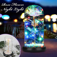 Enchanted Forever Rose Flower In Glass Dome LED Light Valentine's Day Xmas Decor