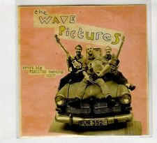 (HC736) The Wave Pictures, Great Big Famingo Burning Moon - DJ CD