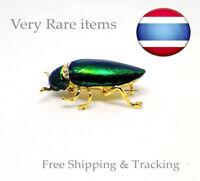 Jewel beetle brooch Handmade elytra scarab wing broche Brosche