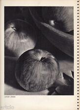 "Héliogravure - 1935 - "" Apples "" par Leigh Irwin"