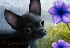 ACEO art print Dog 94 black Chihuahua flower from original paintings L.Dumas