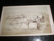 Cdv old photograph work man horse and loaded cart c1870s ref 36